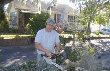 Allen's Tree Works