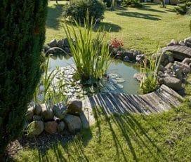 Landscaping Oxnard
