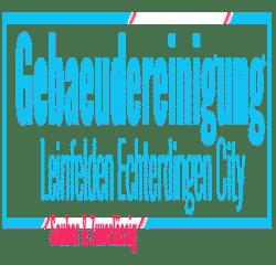 गेब्यूडेरेनिगंग लेइनफेलडेन-एच्टरडिंगेन सिटी