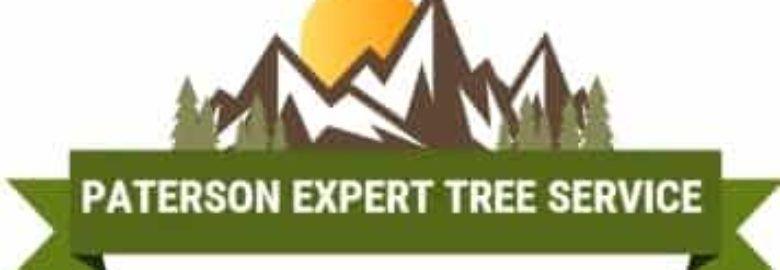 Servicio de árbol experto de Paterson