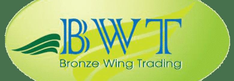 Commercio di ali di bronzo