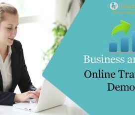 Business Analyst Course Online   Business Analyst Course   OnlineITGuru