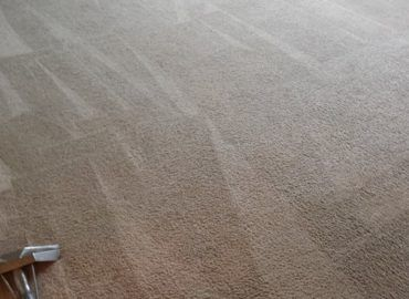 Carpet Cleaning Arlington