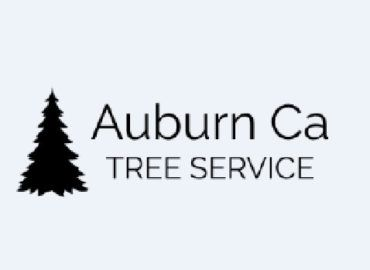 Auburn Ca Tree Service