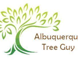 Albuquerque Tree Guy