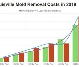 ALL US Mold Removal Louisville KY – Mold Remediation Services