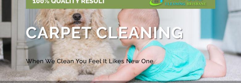 Cheap Carpet Cleaning Brisbane
