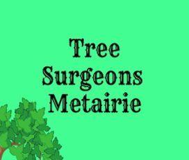 Tree Surgeons of Metairie