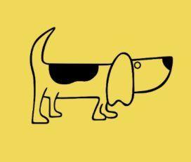 Wind Fin Pet Shop