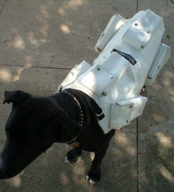CANINE WEIGHT SET®