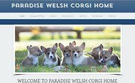 ParadiseWelsh Corgi Home