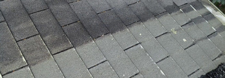Sussex County Roof Cleaning & Pressure Washing