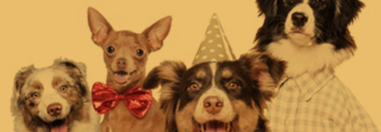 Pet Supply Stores Franchise