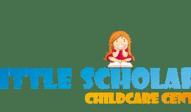Asilo nido Little Scholars VI