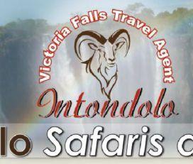 Intondolo Safaris and Tours