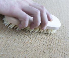 Carpet Cleaning Tarzana