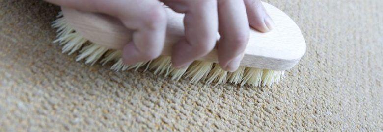 Carpet Cleaning Tarzana