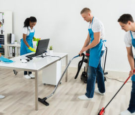 Sunshine ECO Cleaning Service