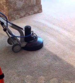 Healthy Home Carpet Cleaning