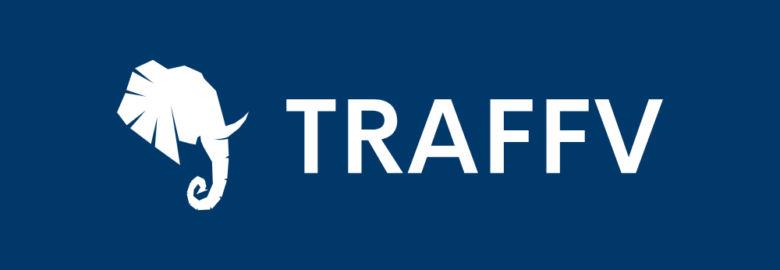 Traffv SEO Agency