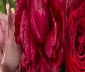 Mordialloc Florist