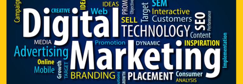 WeBeeSocial : Creative Digital Agency or Marketing Company in Delhi