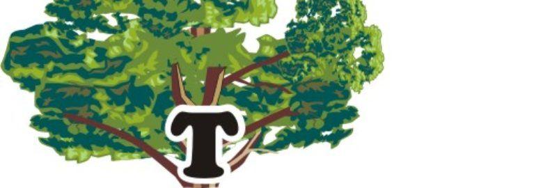 Florapine Tree Service