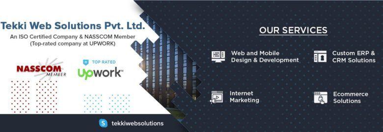 Software Development Services in USA – Tekki Web Solutions Pvt. Ltd.