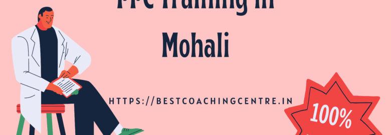 PPC Training in Mohali