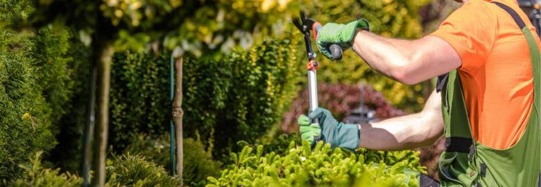 Lancaster Tree Service