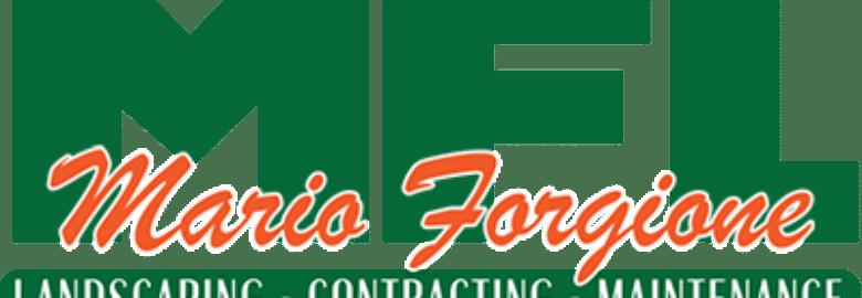 Mario Forgione Landscaping