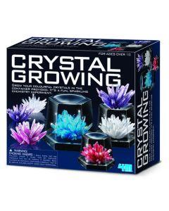 4M - Crystal Growing Kit (Large)