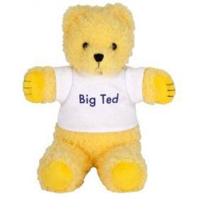 Big Ted Beanie
