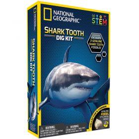 Shark Tooth Dig Kit