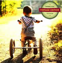 Trybike steel vintage edition