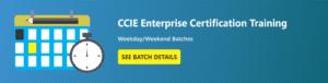 CCIE Enterprise Batch