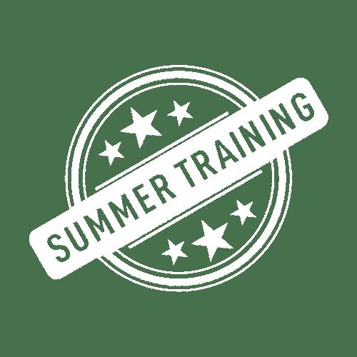 Summer Training Icon 2