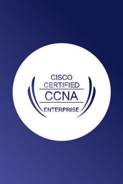 IT Networking (Cisco) Program