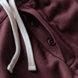 The Fillmore Pant in Burgundy Terry: Alternate Image 4