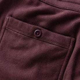 The Fillmore Pant in Burgundy Terry: Alternate Image 5