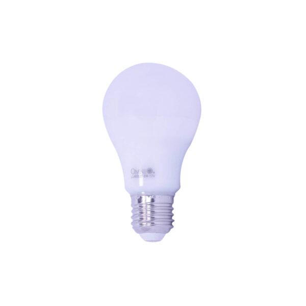 Omni Led LITE G60 12 Volt 8 Watt E27 G60 12V OM040 1