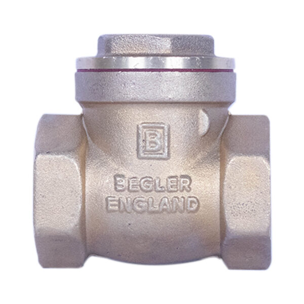 begler swing check valve 1