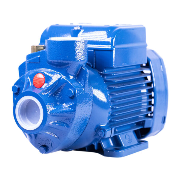 Pedrollo Water Pump Peripheral Booster PKm60 0.50hp