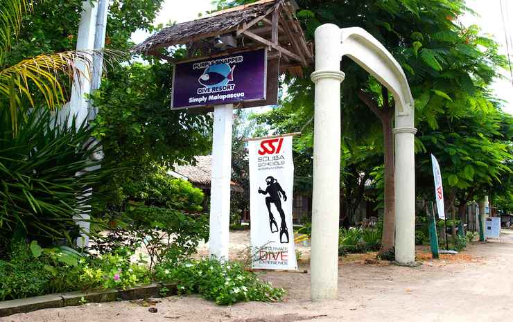 THE SHARK'S TAIL DIVE CENTER