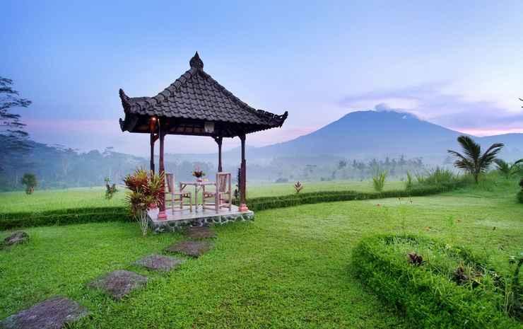 Great Mountain Views Bali -