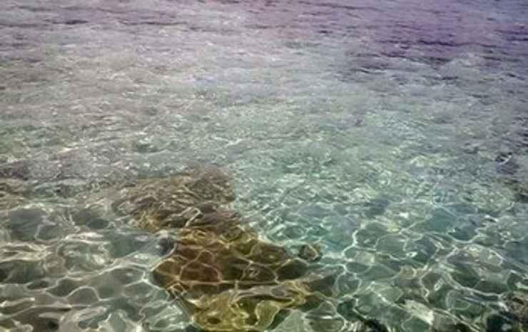 NICI ISLAND
