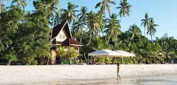 VIEW_ATTRACTIONS Alona Tropical Beach Resort