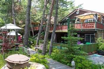 Featured Image Marsh Mallow Pension