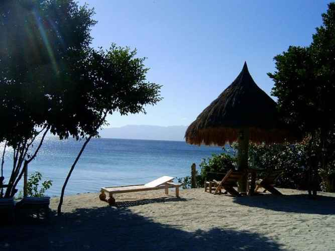 VIEW_ATTRACTIONS Sea Turtle House