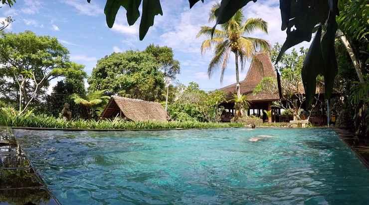 SWIMMING_POOL Kampoeng Padi Resort